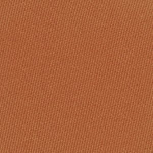 Pressed Pigment Feather Edition Cinnamon